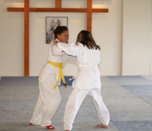Aikido Dojo Südstern – Kinder Training – Berlin Kreuzberg 16